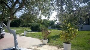 parga-sunnysea-apartments11