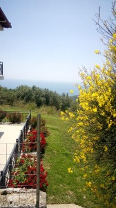 parga-sunnysea-apartments12